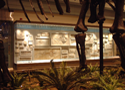 artifact mounts, exhibit consulting, Carnegie Museum of Natural History